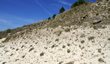 Dune system of the A Insua cove